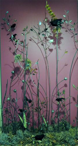 Linda Kilgore, Bosque, mixed media installation